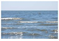 plaja salbatica-14