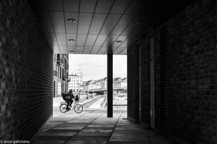 bring-your-bike-1
