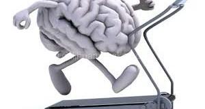 Latihan Senam Otak Pada Anak