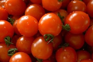 Small_tomatoes