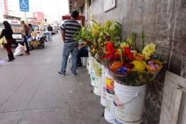Flowers sold along Av. Serdan