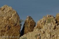 Ospreys nest on the pinnacles.