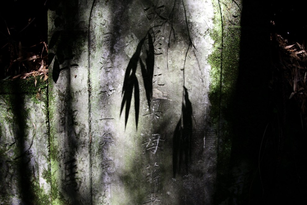 The shadow of bamboo falls on a grave in the forest.