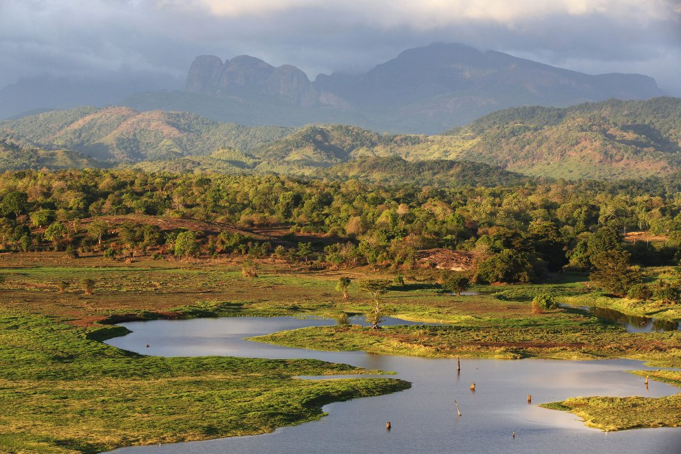 The Wasgamuwa National Park in central Sri Lanka, famed for its wild Asian elephant populations.