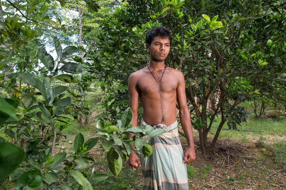 Sugathapala, of Rudunnawawa village, stands amongst orange trees outside of his home near the Wasgamuwa National Park. Conservationists have discovered that citrus trees act as a natural deterrent to elephants, who reportedly dislike the odour given off by the trees. This provides a natural defence that villagers can use to protect their land from elephants that often travel nearby. Habitat fragmentation has increased the incidence of human-elephant conflict, resulting in new methods to hopefully prevent deadly encounters in the area.