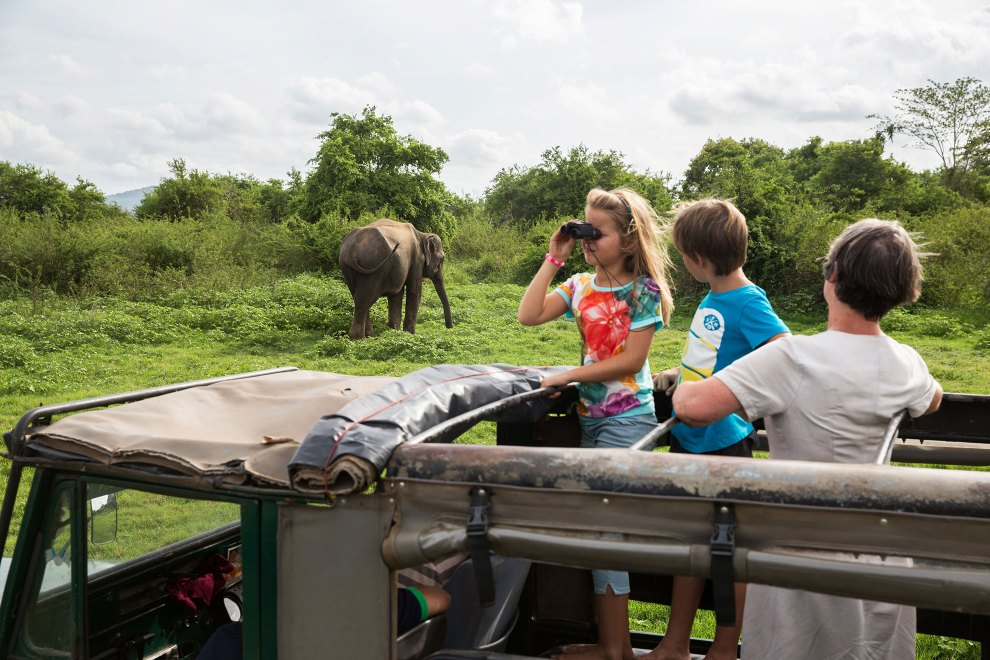 Tourists stand in the back of a 4x4 vehicle and watch a wild elephant in the Minneriya National Park in Sri Lanka. Billed as an 'Eco-tourism' destination, visitors are whisked around the park in packs of vehicles, chasing the elephants that dare to come out of the forest to feed and drink from the central reservoir. There is little regard for quiet observation in an area that has become a large commercial operation for local tour operators.