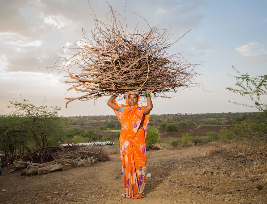 A woman carries recently collected twigs and branches that will be used for firewood in her village. Deforestation and excessive exploitation of forest resources have been blamed as a contributing factor to the recent severe drought in western India.