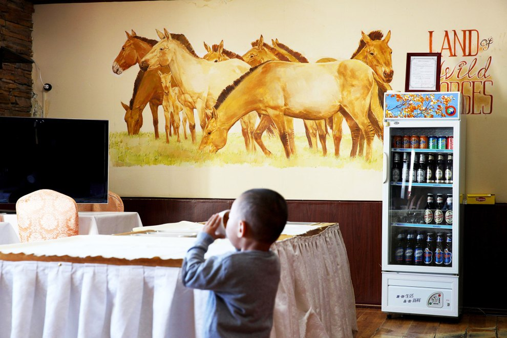 A child drinks from a cup in a dining hall at the Hustai National Park in central Mongolia. A mural depicting a herd of 'takhi', wild Mongolian horses, reminds diners of the country's iconic animal which is on the brink of extinction.