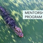 Mentorship Program 2018 – Applications Open