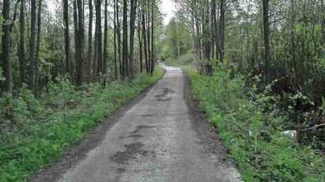 Road Many Years Ago