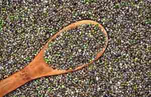 hemp-seeds-300