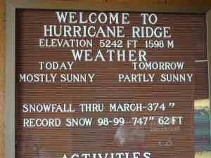 Todays weather on Hurricane Ridge.