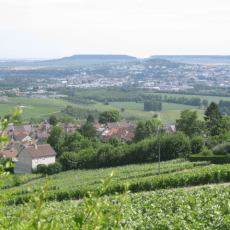 Splash, Bubble, Fizz – The Champagne Region