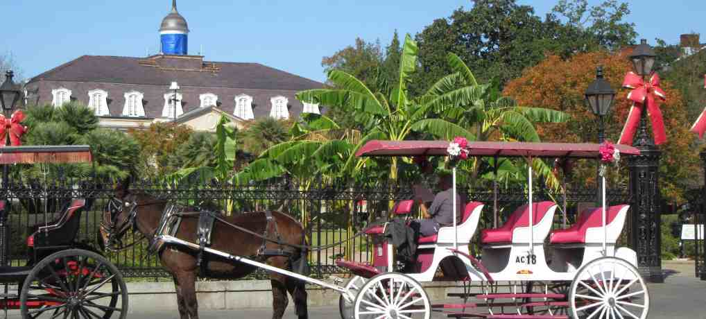 One Day: Six and A Half Great Things To Do In New Orleans