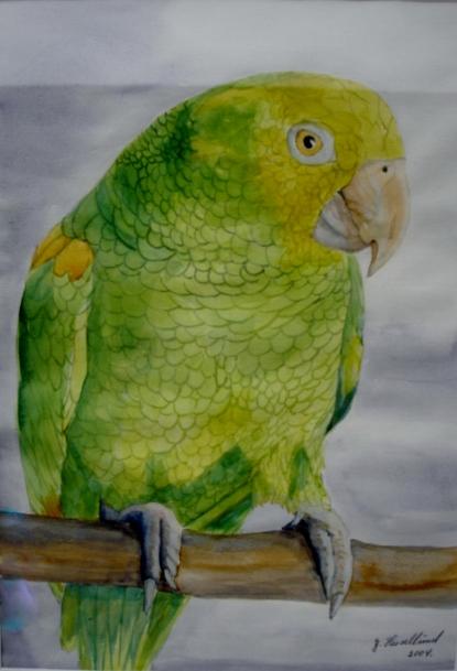 Gulgrøn Pappegøje