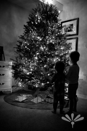Jay and Charlie by the tree 2013