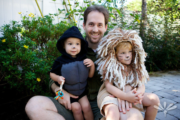 lion and gorilla with the zoo keeper
