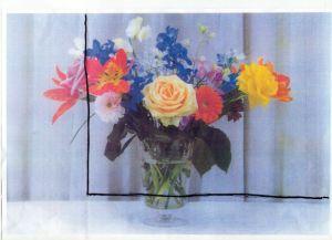 photo-for-gamut-flower