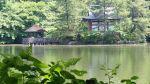 syakujii_park_photo2