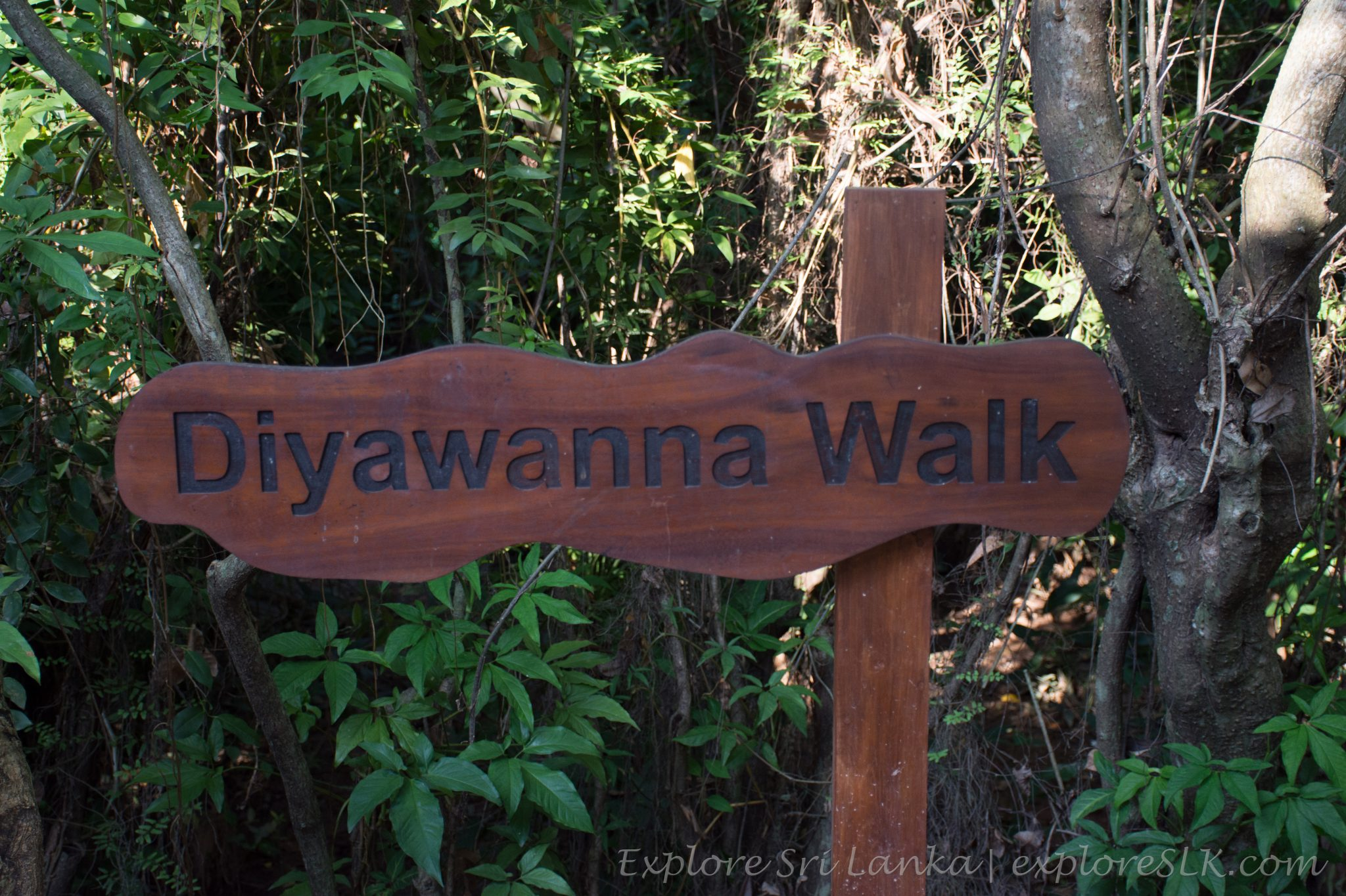Diyawanna walk sign board