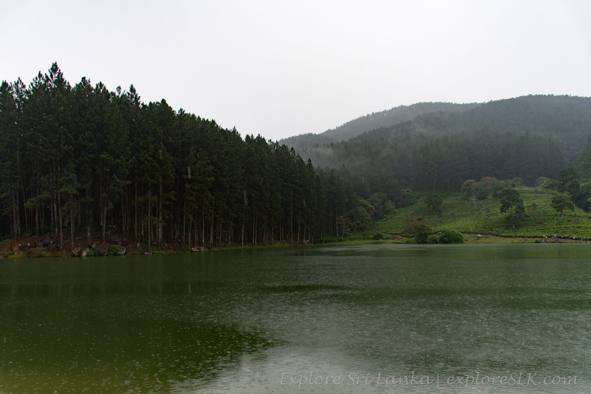 Sembuwatta Lake