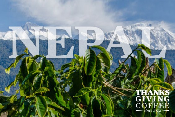 Nepalese Coffee