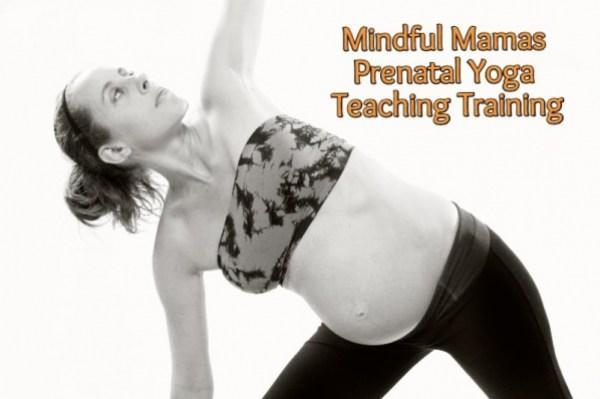 Mindful Mamas Prenatal Yoga Teaching Training this Spring at Karma Yoga in Bloomfield Hills, MI