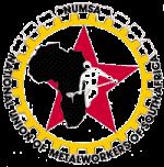 numsa logo