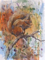 Ratatoskr, the Red Squirrel DEREK ROBERTSON