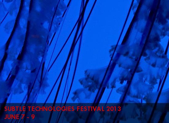 Akimbo_Jellyfish2.jpg