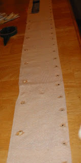 Seed Strip - Toilet Paper Double Row Different Plants!
