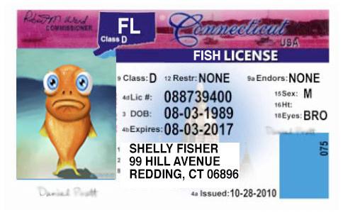 free fishing license day – hello, news ct