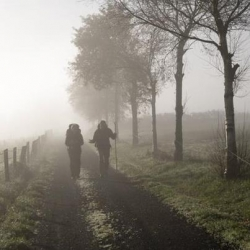 Camino de Santiago med Spain is More