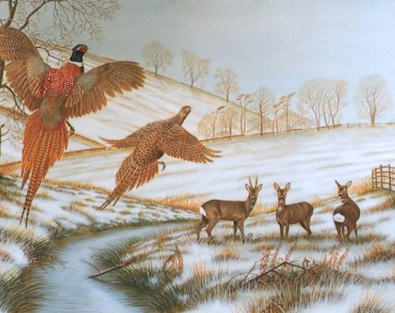original wildlife paintings pheasants