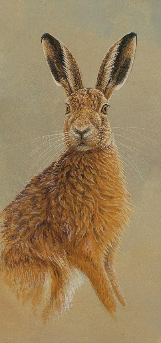 original hare painting