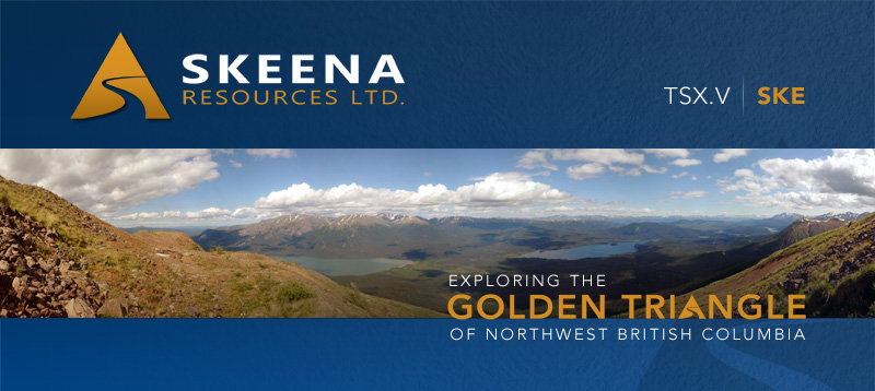 Skeena Resources Header Image