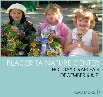 Placerita Nature Center Holiday Craft Fair December 6 & 7