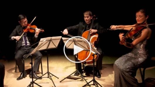 Barber: Adagio for Strings, Original Version, Dover Quartet