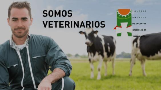 """Spot campaña """"Dos Caras, Una Salud. Lo que le ocurra a él, te afecta a tí"""". 2016 Consejo Andaluz Colegios Oficiales Veter"""