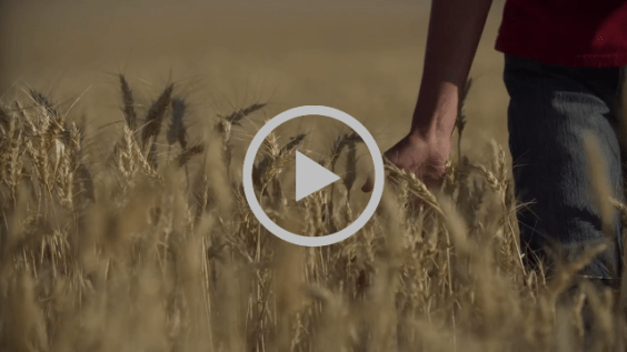 The Next Generation: Farming in the Wallowas