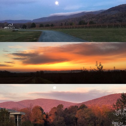 Crozet is amazing