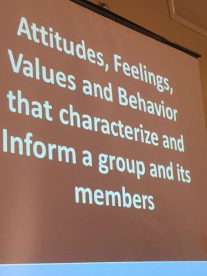 Culture - Attitudes, Feelings, values and behavior that characterize and inform a group and its members