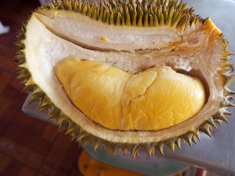 Longlaplae Durian