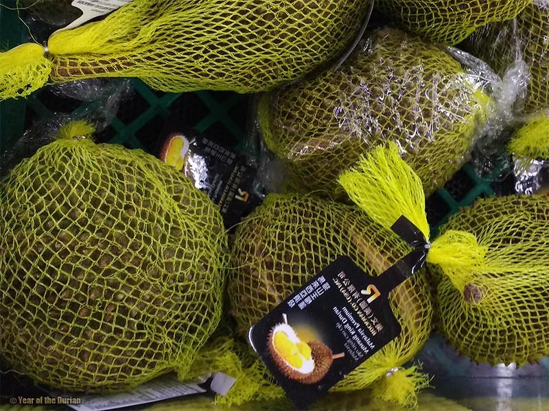 Frozen Musang King Durian in Portland, Oregon