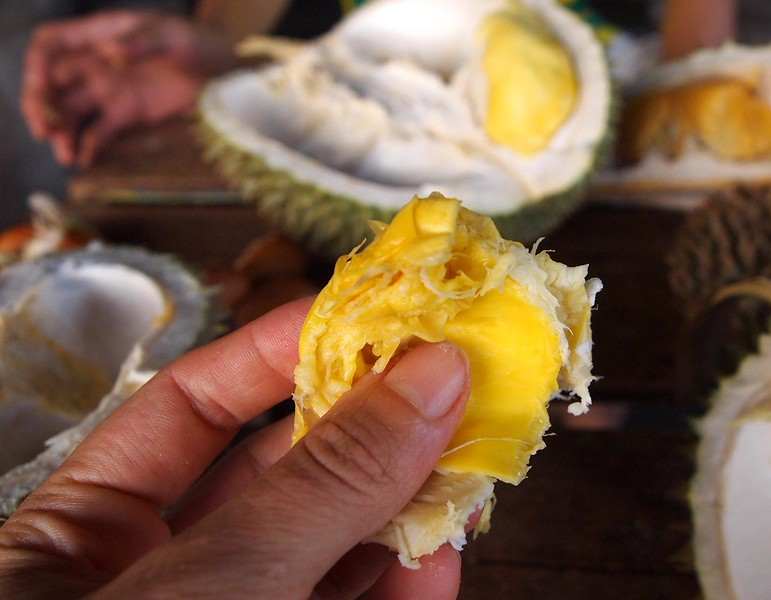 holding durian piece