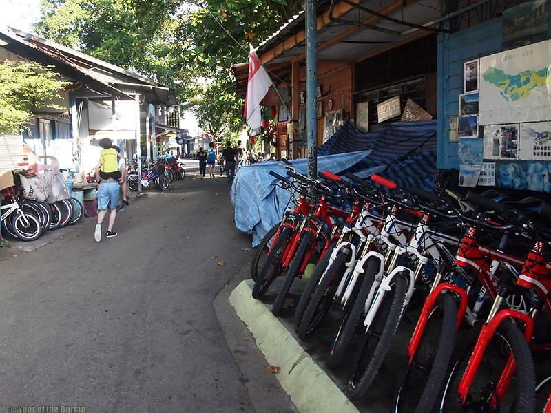 bicycle rental Pulau Ubin