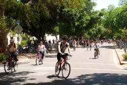 Cyclists in Davis