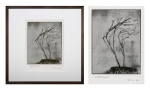 """""""Windblown Branch 3"""" © Mat Hughes. Found, Little Desert National Park, Victoria. Approx. 6.5x8.5"""" (16.5x21.5cm) handcrafted silver gelatin tree bark still-life study from scanned large format 4x5 negative. Printed on fibre paper and bonded on 16x16"""" (40.5x40.5cm) Forex foamboard ready for framing. Edition of 3 (last print!) unique signed prints. Offered by GALLERY5X7 at $250."""