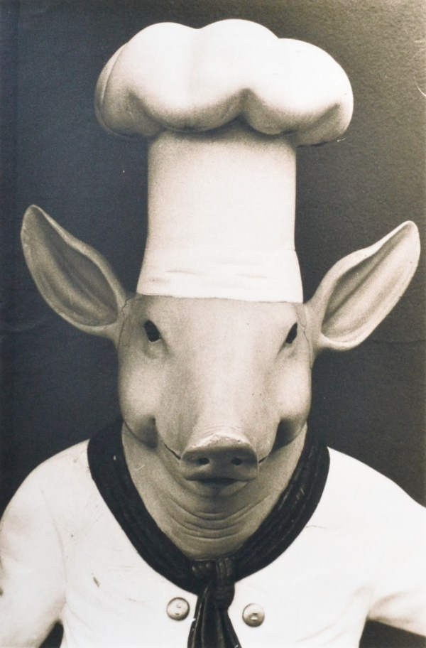 """""""Pig"""" © Barry Mayfield. Approx. 7.5X11.5"""" (19X28.5cm) handcrafted alternative process photograph (silver gelatin lith print). GALLERY5X7 offers this signed, original print at $250."""