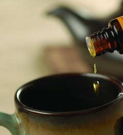 Essential Oils Introduction Class